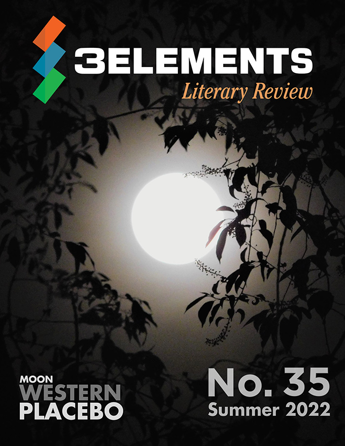 Magazine Issue No. 28,  2020, by 3Elements Literary Review